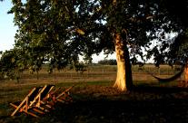Relax dans le parc… le hamac et les chaises longues vous attendent !
